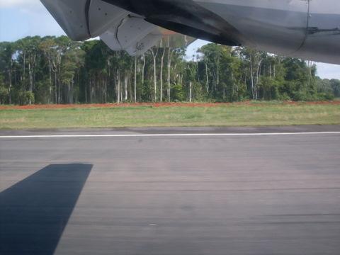 Avião aterrissando na floresta.