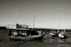 Barco em Macau (02)
