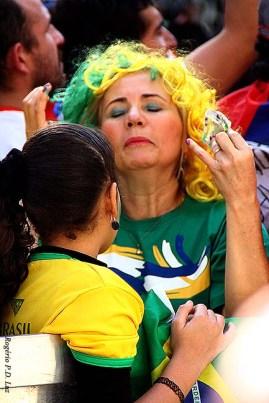 Copa Mundo Fan Fest ChilexHolanda (52)
