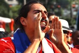 Copa Mundo Fan Fest ChilexHolanda (58)