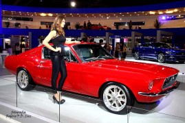 Ford Mustang antigo (02)