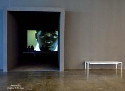Bienal São Paulo 2014 (17)