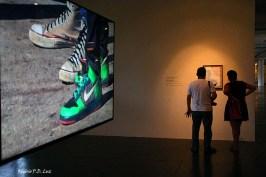 Bienal São Paulo 2014 (23)