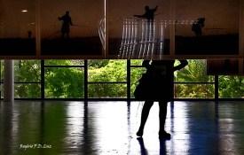 Bienal São Paulo 2014 (30)