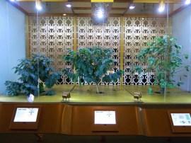 santos-sp-museu-do-cafe-22