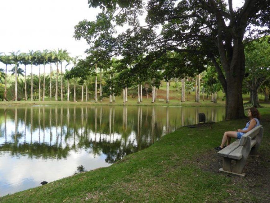 Habitation Clement, uno de los mejores sitios que ver en Martinica