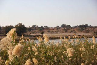 Un campo de fútbol en la frontera entre Angola y Namibia