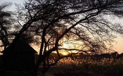 Cabaña n'Kwazi lodge en Rundu