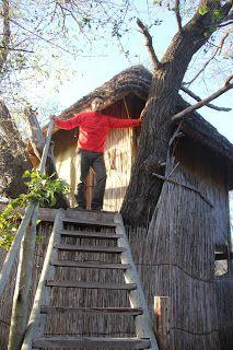Cabaña del Ngepi Camp