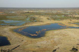 Delta del Okavango desde el aire