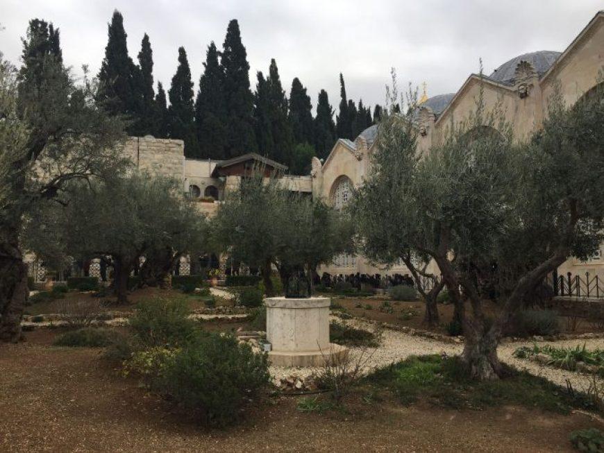Huerto Getsemani