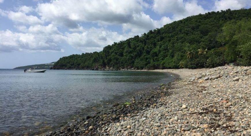 Anse Caraibe, una de las mejores playas de Gaudalupe