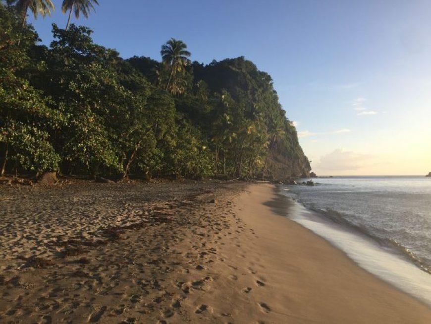 Playa La Couleuvre, una de las mejores playas que ver en Martinica