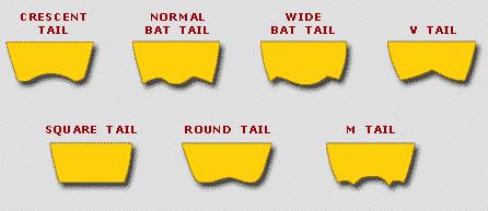 bodyboard_tails