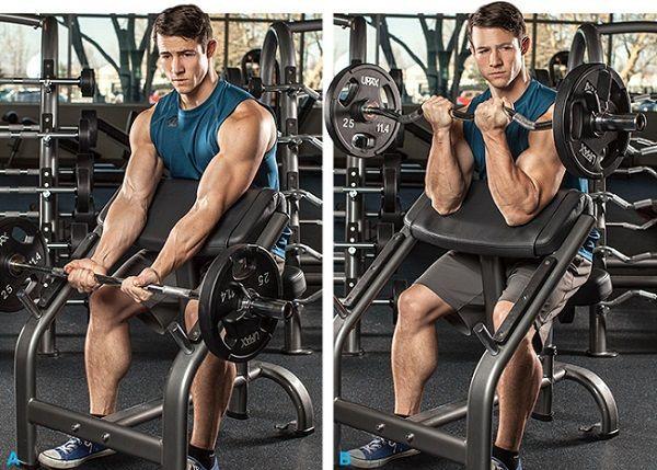 Curl-de-Biceps-en-banco-Scott-con-Barra