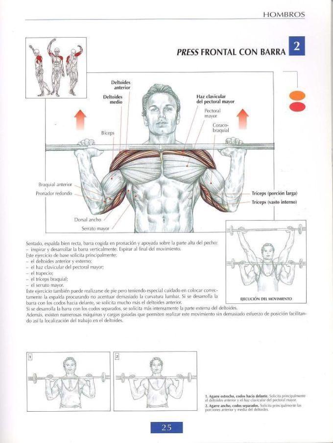 Elevaciones laterales o pajaros