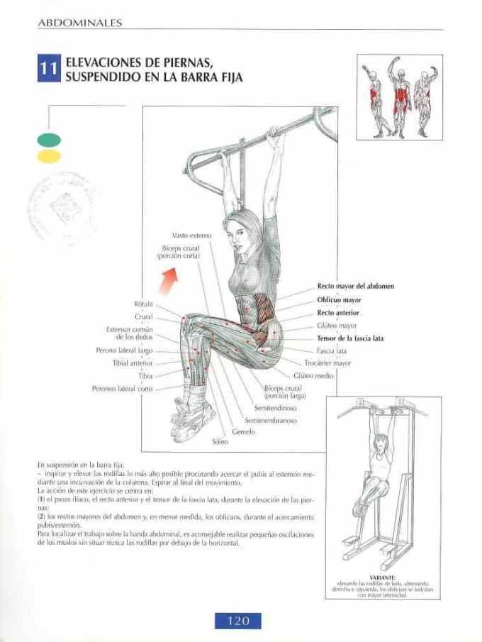 Elevaciones de piernas suspendido en barra