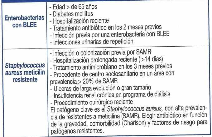 Factores de riesgo para patógenos resistentes en IPPB