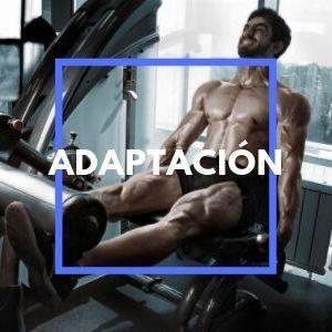 rutina-adaptacion