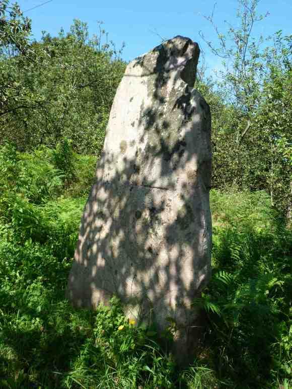 Menhir de Txoritokieta (Gipuzkoa)
