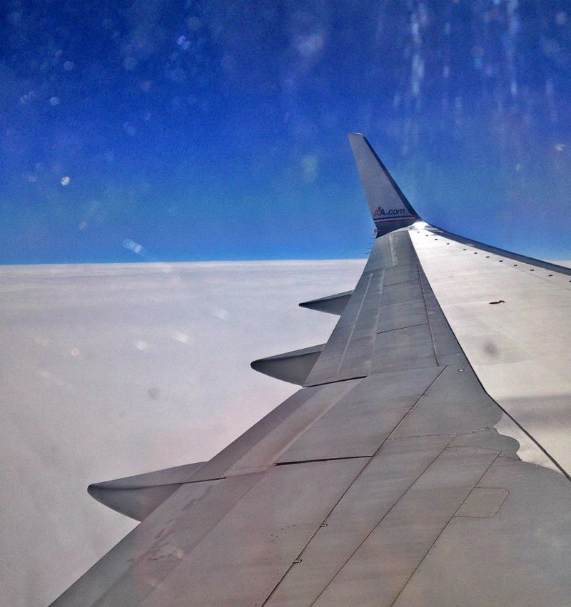 blue sky and plane wing by eileen cotter wright