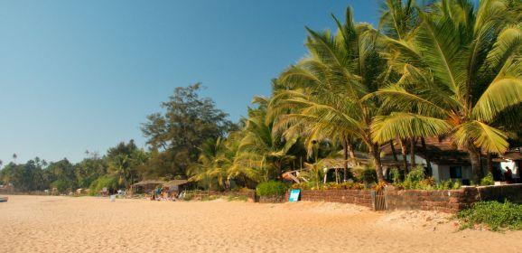 A Wellness Guide to South Goa