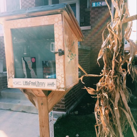 Little Free Library #32