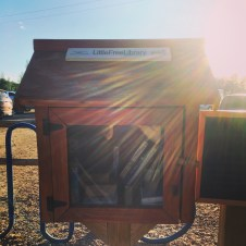 Oh, I found a Little Free Library.