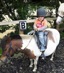 Horse Riding Lessons In County Durham