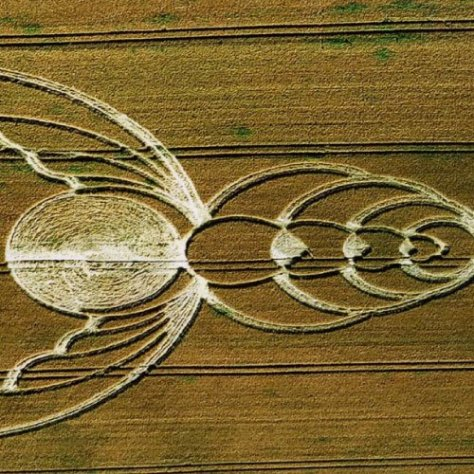 Bee Crop Circle - Wiltshire England UK - from Patty Greer Films