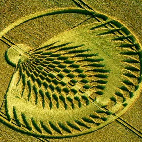 Explosion Crop Circle - Wiltshire England UK - from Patty Greer Films