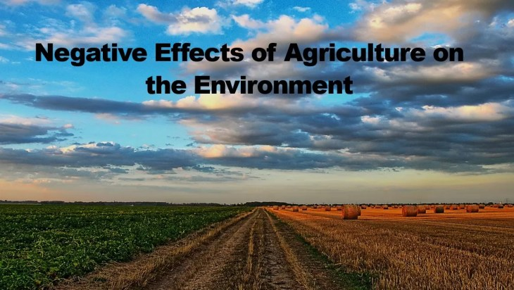 Negative Effects of Agriculture on the Environment