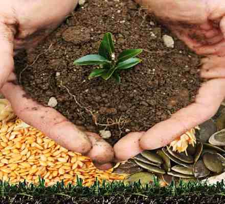 Objectives of Integrated Nutrient Management