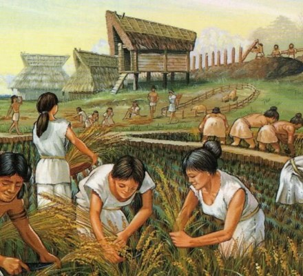 How Did Agriculture Change Archaic Cultures