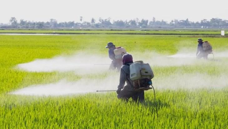 pesticide pollution