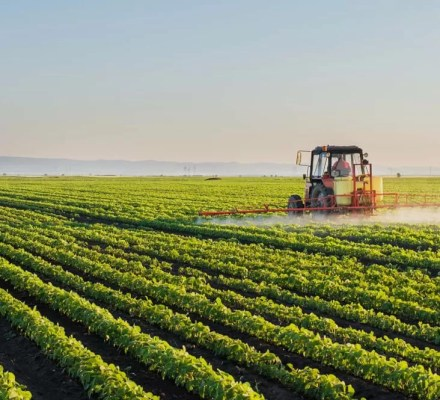 Pakistan Will Stop Importing Agricultural Products