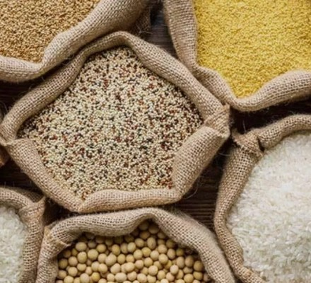 Report On Staple Foods Prices