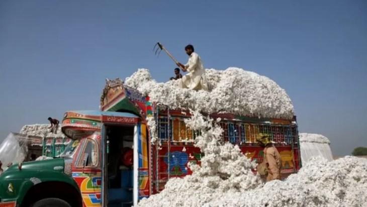 8.5 Million Cotton Bales