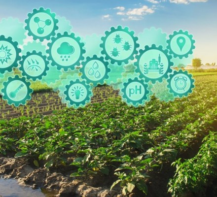 High-Tech Farming and climate change