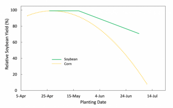 Corn and soybean planting date response comparison