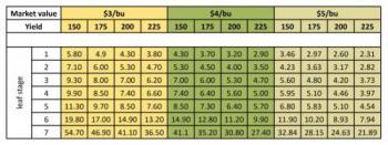 treatment decision table for stalk borer