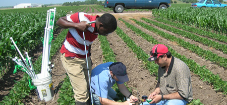 Figure 1. University researchers installing soil water sensors.
