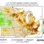U.S. Corn Belt Vegetation Conditions – Early July