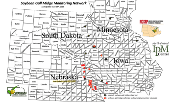 Map showing the cumulative number of soybean fall midge adults collected from emergence traps as of June 24 and 25.