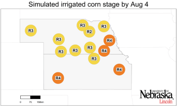 Graph of Simulated developmental stage for irrigated corn at each location