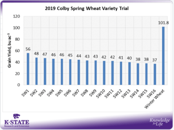 spring wheat averages graph
