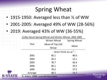 spring wheat averages
