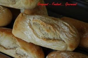 baguette Monge 013 copie