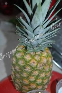 A Ananas -DSC_8138_16646