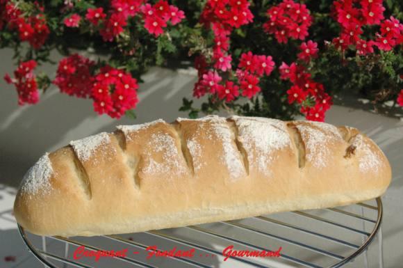 Pain italien - septembre 2008 024 copie